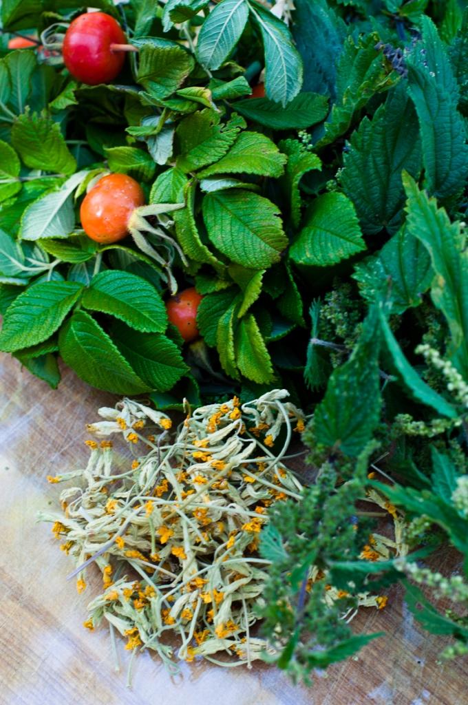 herbal ingridients